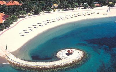 Bali Tropic Beach